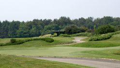 Hortensia_golf_bogogno_03