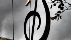 Hortensia_musica_orticolario_14_01