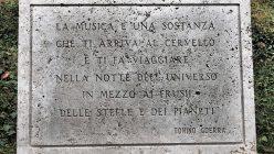 Hortensia_musica_orticolario_14_05