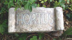 Hortensia_Hortus_15